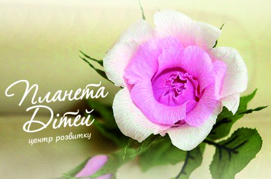 Мастер-класс: Розы из гофробумаги